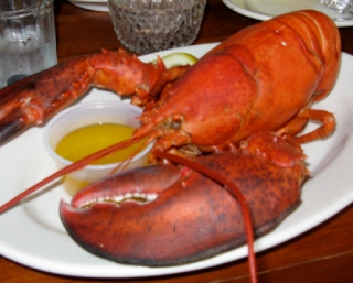 photo of a lobster dinner served at Provincetown restaraunts