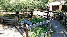 photo showing clean Cape Cod campgrounds outside men's showers, shaded bench and ramp access