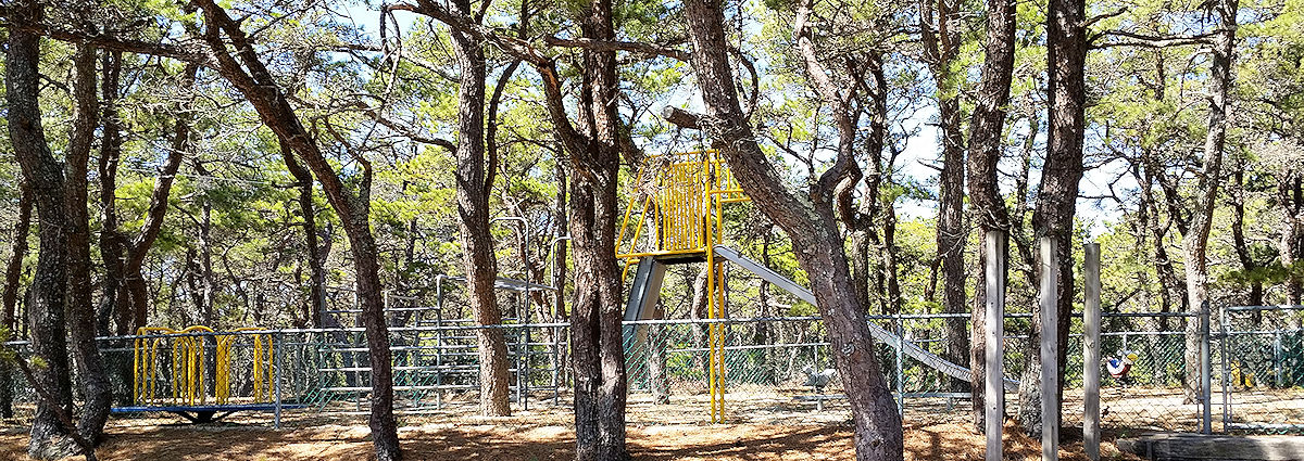 Kids especially love the whirl and monkey bars on our Cape Cod campgrounds playground