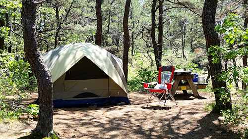 North of Highland provides the best Cape Cod campgrounds for tenting on Cape Cod