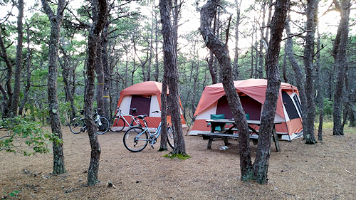 Bring your tent and your bicycle for memorable Cape Cod camping near the beach in a natural wooded setting