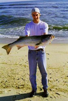 photo of man holding a large striped bass he caught on the Cape Cod beaches in North Truro, MA