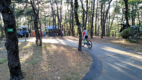 Children love biking around in the campground and on the nearby Cape Cod bike trails