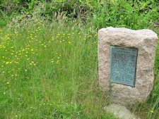 photo of plaque at Pilgrim Spring with yellow wild flowers growing beside it