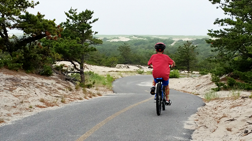 Enjoy the Cape Cod scenery while riding the Cape Cod Bike Trails along the Province Lands Trail in Provincetown
