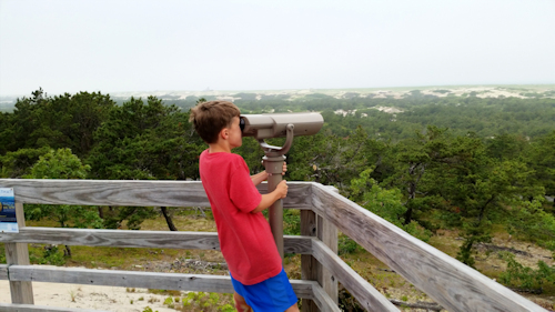 Stunning views of the Outer Cape from along the Provincelands Cape Cod bike trails